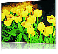 DIY Digital Oil Painting  Frame Family Fun Painting All By Myself   Yellow Tulips   X5054