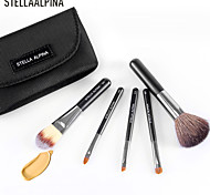 Stellaalpina 5 Makeup Brush Set Up A Brush MAC Makeup Style