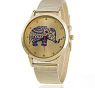 Women's Fashion Steel Band Quartz Anolog Wrist Watch