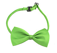 Dog Tie - M - Spring/Fall - Green - Wedding - Nylon