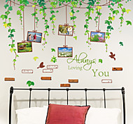 Wall Stickers Wall Decals, New Arrival Green Vine Memory Tree Photos PVC Wall Sticker