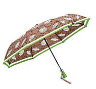 japonés hierro precisión de fantasía esqueleto paraguas plegado paraguas de la publicidad