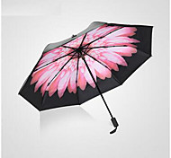 Складные зонты Муж. Lady
