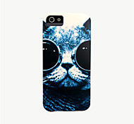 cat patroon dekking voor iphone 4 case / iphone 4 s case