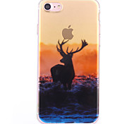 Funda Trasera Diseño Animal TPU Suave Cubierta del caso para Apple iPhone 7 Plus / iPhone 7