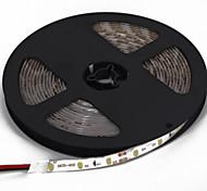 5M IP65 RGB 2835SMD Flexible Strip Light Home Decoration 60leds/m(DC12V)