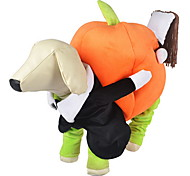 Dog Costume / Clothes/Jumpsuit Orange Dog Clothes Winter / Spring/Fall Pumpkin Cute / Cosplay / Halloween