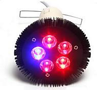 15W E26/E27 Lampes Horticoles LED PAR38 5 LED Haute Puissance 800 lm Rouge Bleu V 1 pièce