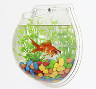 Mini Aquariums Background Mini Wall Fish Tank Plastic White Green Transparent