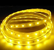 3m 220v Higt яркие светодиодные полосы света гибкие 5050 180smd три кристаллические водонепроницаемый свет бар света сада с штепсельной