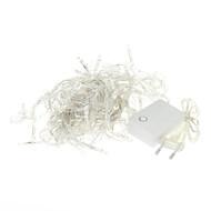 10M 100-LED 3000K Warm White Light LED Strip Light (220V)