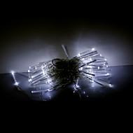 10M 100 LEDs Christmas Halloween decorative lights festive strip lights-Fiber optic lights white (220V)