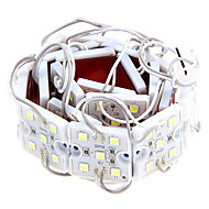 Waterproof 20W 5050SMD Cool White Light LED Module (DC 12V)