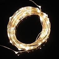 10m 9.6w 100-led lämmin valkoinen valo joulu salama nauhat valo lamppu (DC 12V)