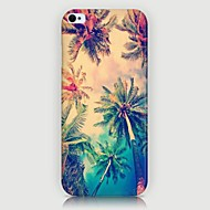 Coconut Palm Pattern Back Case for iPhone5/5S