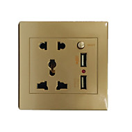 The Golden Standard 5 Hole Double USB Socket With Switch