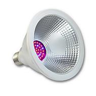 15 E26/E27 LED-kasvivalo PAR38 36 SMD 3020 1000 lm Punainen / Sininen Vedenkestävä AC 100-240 V 1 kpl