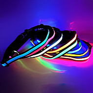 데코레이션 라이트 LED 밤 빛-2W-USB 장식 - 장식
