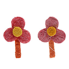 Flower Shape Tooth Cleaning Green Loofah Pet Toys (2-Piece)