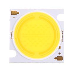 30w cob 2900-3100lm 4500k hvid hvid lys led chip (30-34v, 600ua)