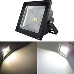 20 W 1 High Power LED 2000 LM Warm White/Cool White Flood Lights AC 85-265 V