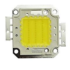 30w 2700lm 6000K kold hvid LED-chip (30-35v)