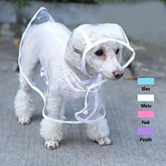 chubasquero transparente fresco para mascotas perros (colores surtidos y tamaños)
