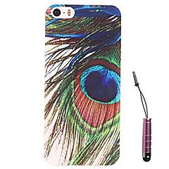 plumes de paon modèle de cas dur&Stylet pour iPhone 5 / 5s