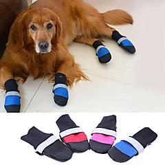 Perros Zapatos y Botas Mantiene abrigado Invierno / Primavera/Otoño Un Color Rojo / Azul / Negro / Rosa Tejido