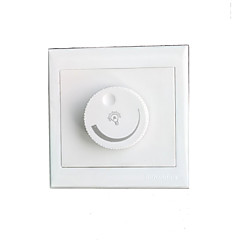 LED Dimmers Switch Electric for The Art of Opening and Closing Lamps and Lanterns (AC220V, 300W)