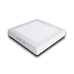 Paneellampen Warm wit Koel wit LED 1 stuks