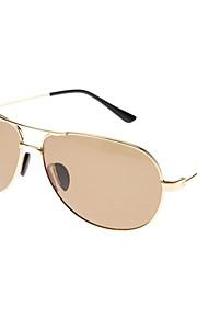 Unisex Brown Lens guldramme Aviator solbriller