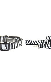 Oxford-The Zebra-stripe Pet Collar and Leash Suit (Assorted Sizes)