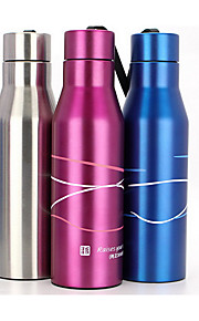 Stainless Steel Water Bottle 700ml
