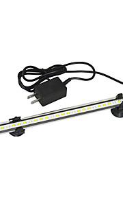 LED osvětlení Bílé / Modré Others Umělá hmota 1.5