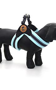 Hunde Krave Seler Reflekterende Justérbar/Udtrækkelig Solid Blå Brun Pink Stof