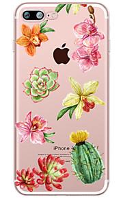Succulent Plants  Pattern Case Flower Soft TPU for Apple iPhone 7 Plus iPhone 7 iPhone 6s Plus 6 Plus iPhone 6s 6 iPhone5 SE 5C iphone 4