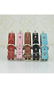 Katter Hundar Halsband Justerbara/Infällbar Andningsfunktion Solid Genuint läder Svart Brun Röd Blå Rosa