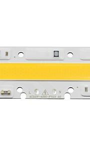 ledコブ電球ランプライト30w 110v入力スマートIC diy led洪水ライトコールドホワイト/ホワイト(1個)