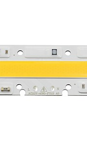 Led lamp lamp licht 30w 110v input smart ic passend voor diy led flood light koud wit / wit (1 stuk)