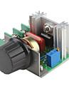 2000W Adjustable 90~220V Voltage Regulator для Dimming Light Lamps Speed Control (220V)