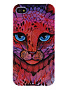 Staring Cheetah Hard Case for iPhone 4/4S