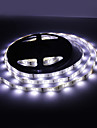 Impermeable los 5M 30W 150x5050 SMD fria luz blanca LED Strip Lampara (12V, IP44)
