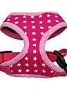 honden harnassen LED verlichting / Verstelbaar/Uitschuifbaar / Sterren Zwart / Groen / Blauw / Roze Textiel