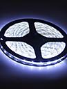 Waterproof 5M 300x3528 SMD  White Light LED Strip Lamp (12V)