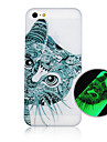 The Cat Pattern Luminous Phone Case Back Cover Case for iPhone5C