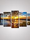 Холст Set Пейзаж Отдых Цветочные мотивы/ботанический Modern Классика,5 панелей Горизонтальная Печать Искусство Декор стены For Украшение