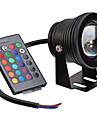 10 Фестон Подводное освещение Утапливаемое крепление 1 Integrate LED 400 lm RGB Регулируемая / На пульте управления / Декоративная AC 12 V