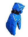 Ski Gloves Full-finger Gloves Women\'s Men\'s Activity/ Sports Gloves Snowproof Ski & Snowboard Polyester Winter