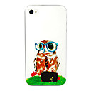Owl Wearing Glasses Pattern Back Case for iPhone 4/4S